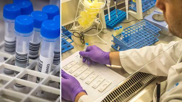 Шведские учёные разработали супербыстрый тест на COVID-19