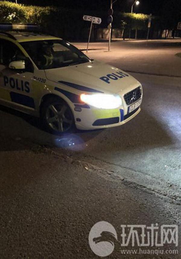 Шведские полицейские вывезли туристов из Китая на кладбище